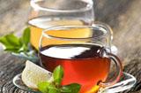 茶饮加盟哪个品牌好