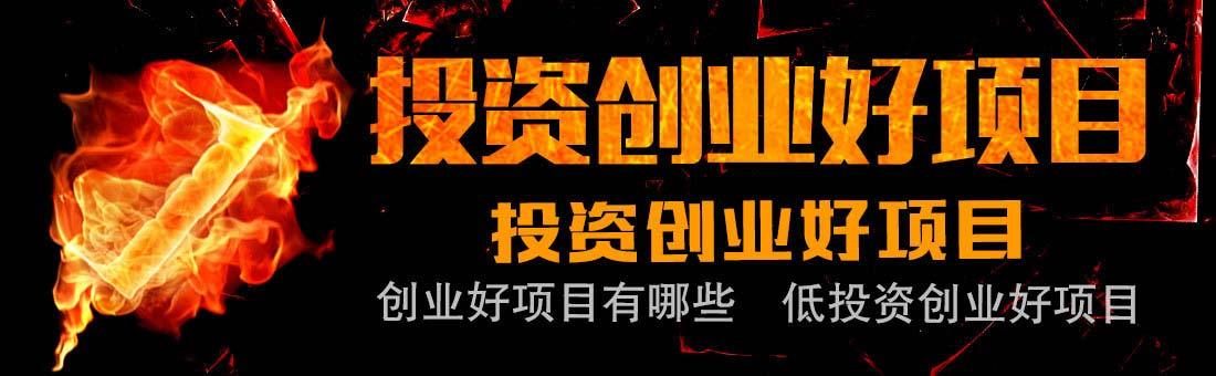 稳稳地占据了行业龙头的位置_小县城创业项目