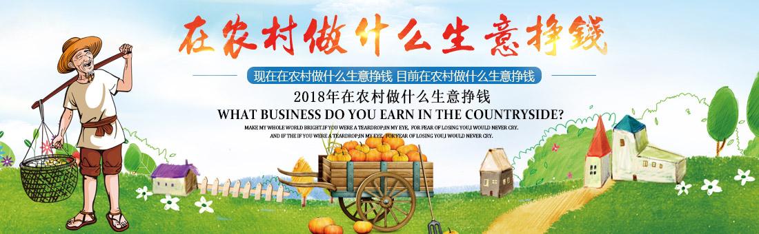 在农村做什么生意挣钱