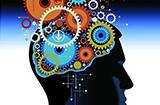 全脑开发训练加盟盈利吗