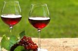 投資葡萄酒利潤高嗎