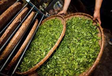 中国2018年(春季)厦门国际茶产业博览会