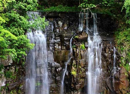 宁波这座公园被评为5A景区厕所配置高端游客:不火才怪