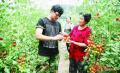 探讨 眼下更赚钱的农业种植项目