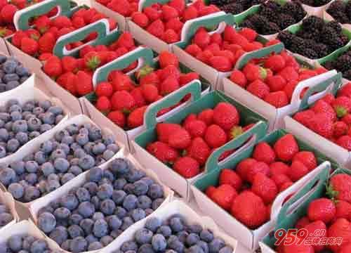 农民做什么生意比较赚钱?做水果批发生意怎么样?