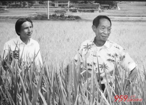 袁隆平宣布成果 农村创业好项目有哪些?