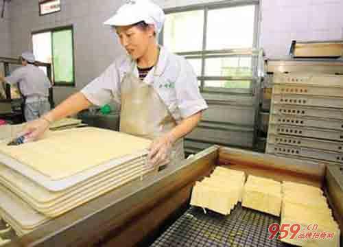 农民工做什么赚钱?适合农民工的小型办厂项目有哪些?