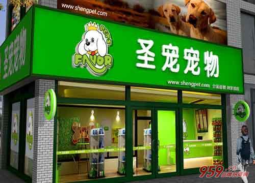 加盟圣宠宠物店好吗?怎样经营圣宠宠物加盟店?