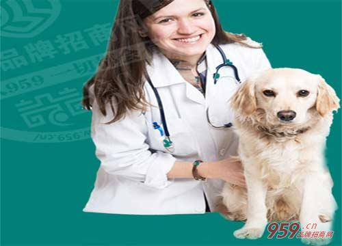 【经营一家大嘴狗宠物医院加盟店前景怎么样】经营一家大嘴狗宠物医院加盟店前景怎么样?
