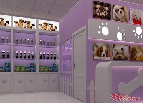开一家宠物店
