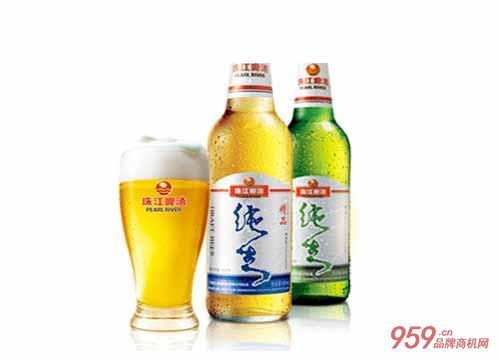 珠江啤酒招商加盟 代理珠江啤酒 珠江啤酒最新消息!