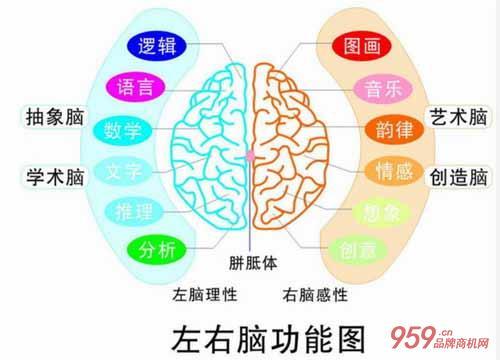 妙学巧记全脑培训
