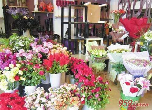 90后女生不断尝试 创业回乡开花店 月营业收入达3万元