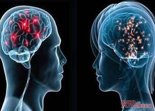 大脑鸣星记忆力