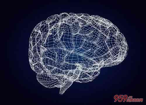 心智通全脑开发
