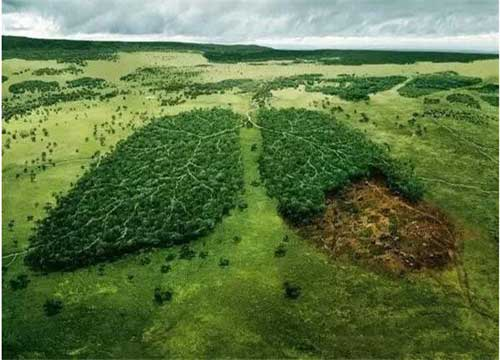 兆亿环保加盟