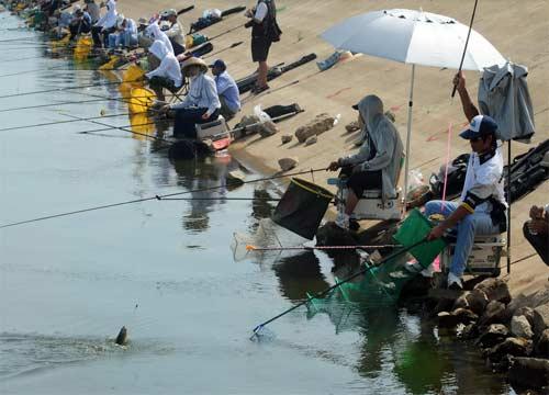 春冬渔具店加盟