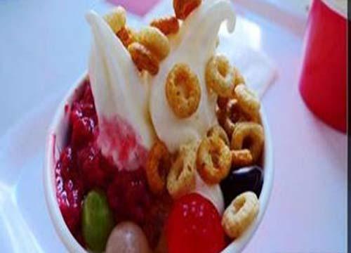 薄荷猫冻酸奶加盟