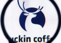 瑞幸咖啡为什么做这么快?小蓝杯爆红背后有什么秘密?