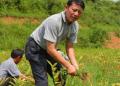 现在农村做什么生意赚钱?这4个小本创业项目绝对不能错过!