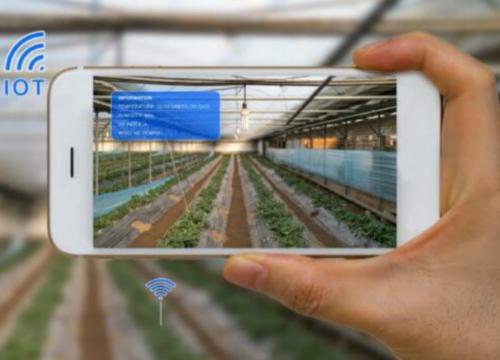 【大亚湾未来前景如何】农业未来的前景如何?先布局者能抢占先机?