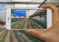 农业未来的前景如何?先布局者能抢占先机?