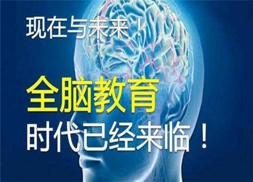 智囊少年团全脑开发