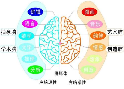 忆触记发特质 教育