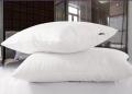 枕頭創業都有哪些發展方向?