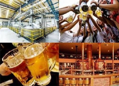 年轻人有哪些项目可以加盟 鲜啤市场不断扩大