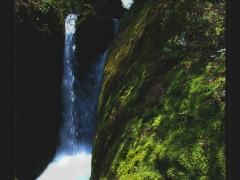 龙洞山泉水