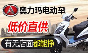 电动车业 强势吸金