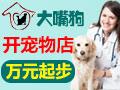 大嘴狗宠物医院 万元投资 开宠物店