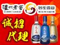 泸州老窖养生酒业天之圣液 厂家直销