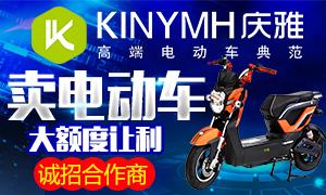 庆雅电动车 自由退换货 一手货源 直送到店
