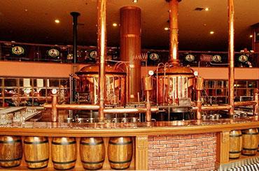 圣伯纯精酿鲜啤 酿酒设备 投资多样