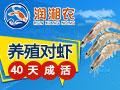 润湘农对虾养殖
