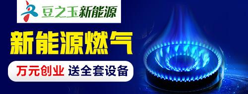 豆之玉新能源燃气 无需经验 技术支持